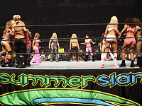 WWE SummerSlam Divas Battle Royal