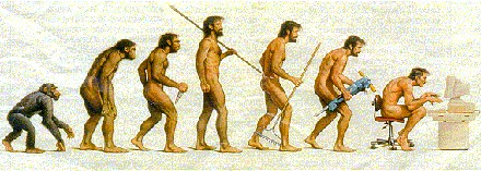male-evolution-updated.jpg